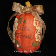 Pumpkin - Give Thanks Orange